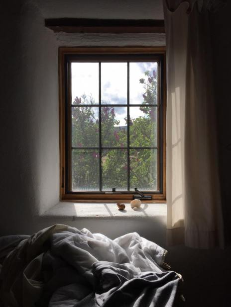 my bedroom window at casa del sol